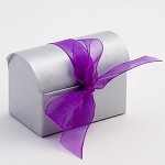 Silver Chest Favor Box (2-3/4