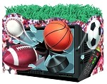 TV/Sports Balls Basket Boxes (Small, 7