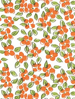 Flower Patch - Orange Printed Cellophane Roll, 100' L