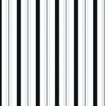 Sweet Stripes - Black & White Cellophane Printed Bags, 100 bags