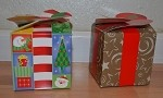 Chirstmas Print Treat Box (4