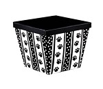 Polka Dot Paws Angled Gourmet Boxes with Lids, 3 boxes
