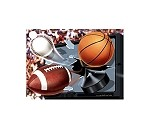 TV/Sports Ball Gift Card (3-3/4