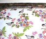 Songbirds Printed Cellophane Roll, 30