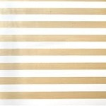 Gold Stripe on White Tissue Paper (20