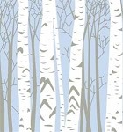 Winter Birch Printed Tissue Paper (20
